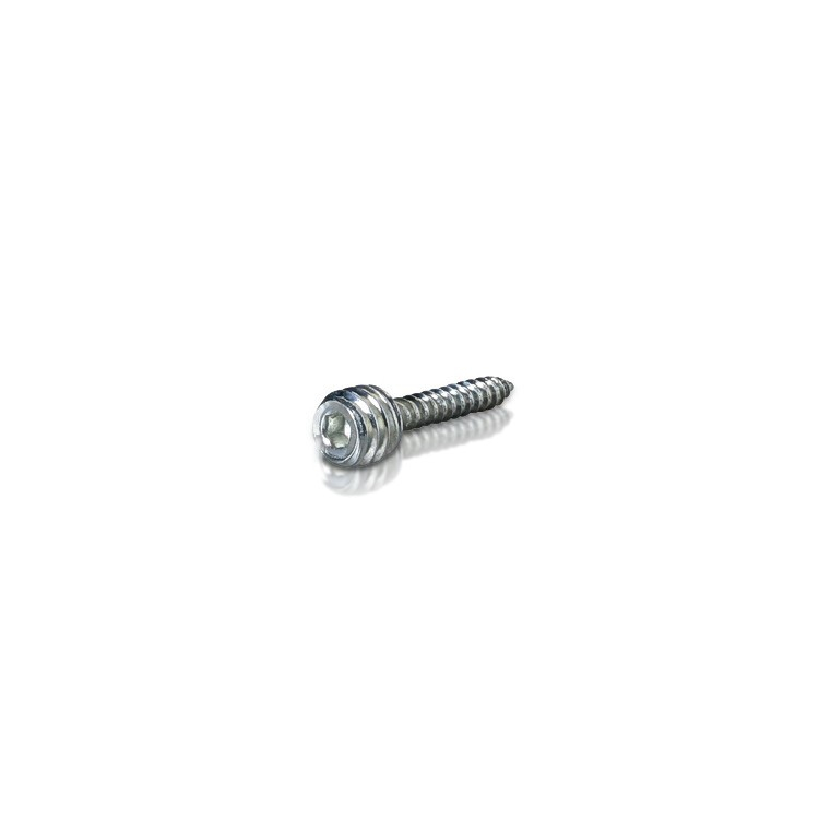 Zinc Combination Screw 5/16-18 Threaded, Length: 1''